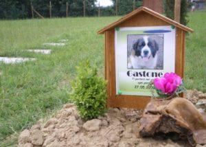 sepoltura-animali-domestici